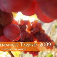 Vendanges tardives 2009